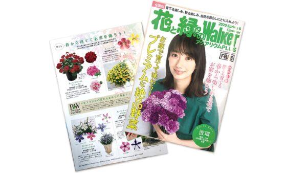 花と緑のWalker