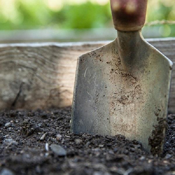ガーデニング 土の選び方