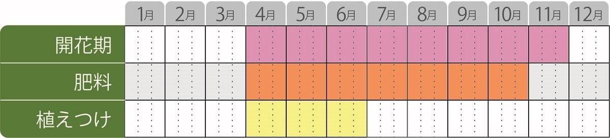 エボルブルスアメリカンブルー栽培カレンダー
