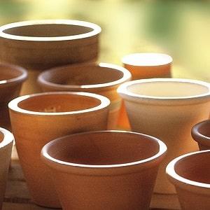 鉢の選び方