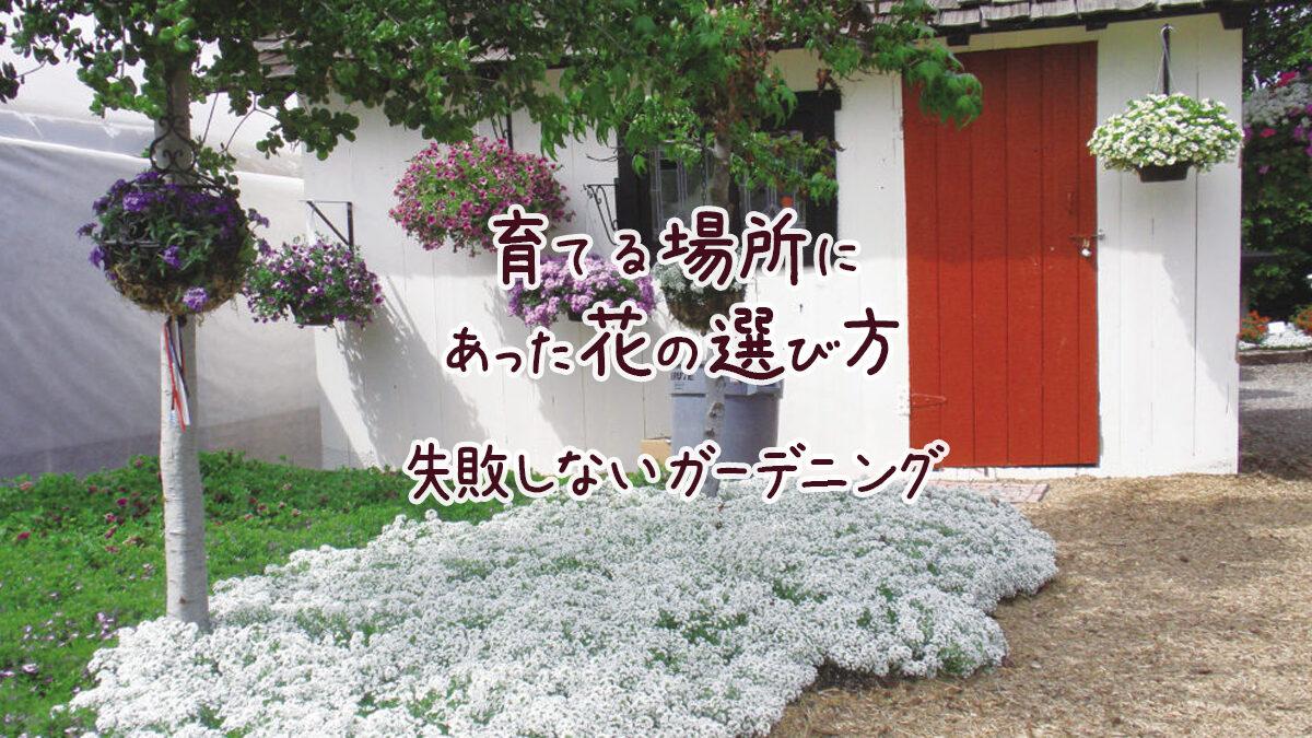 育てる場所にあった花の選び方 失敗しないガーデニング