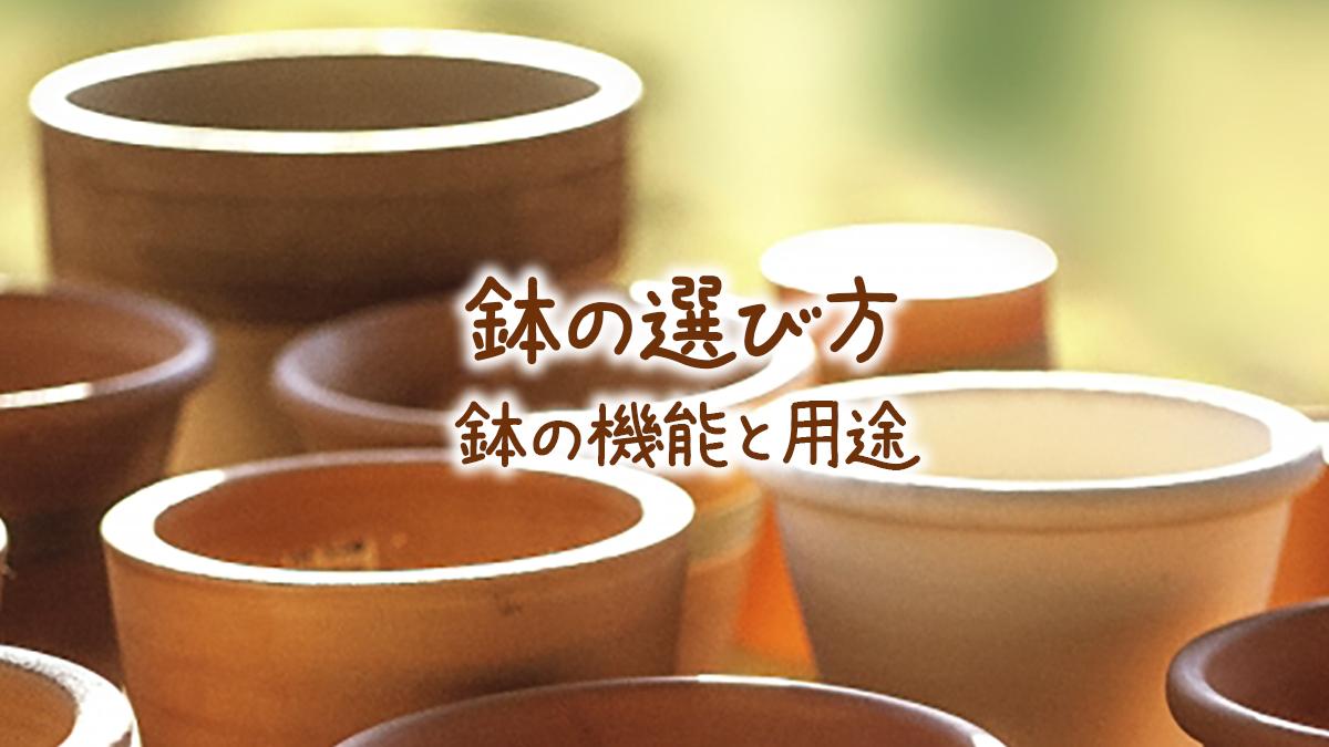 鉢の選び方鉢の機能と用途