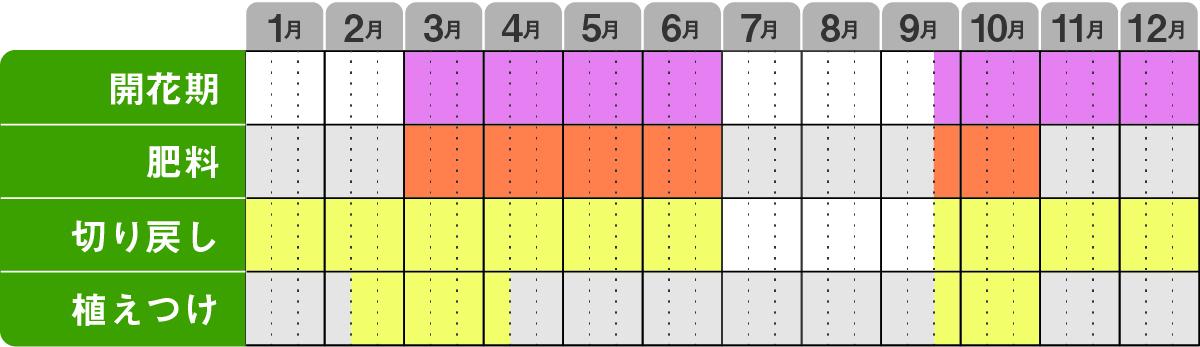 ネメシアサンサシアプラス栽培カレンダー