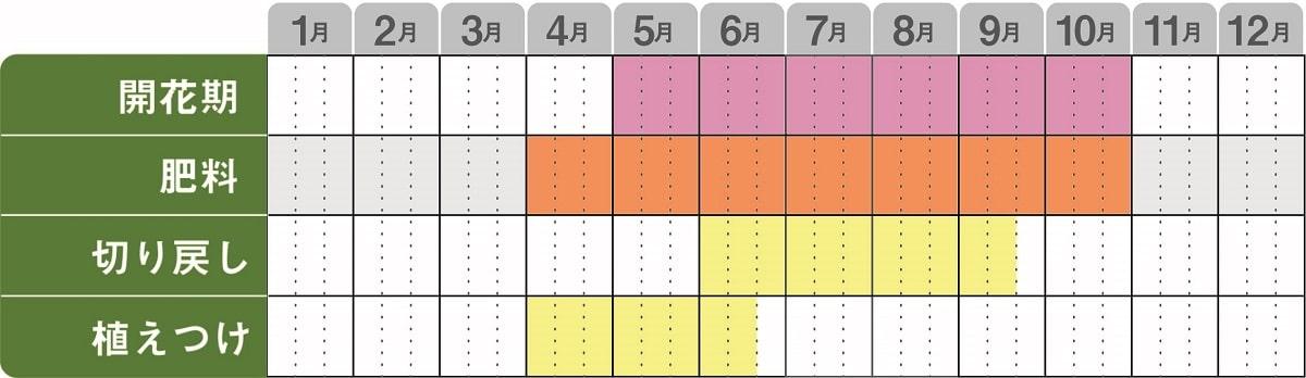 ニーレンベルギアカップフラワー栽培カレンダー