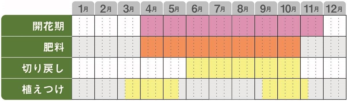 スーパーゼラニウム栽培カレンダー
