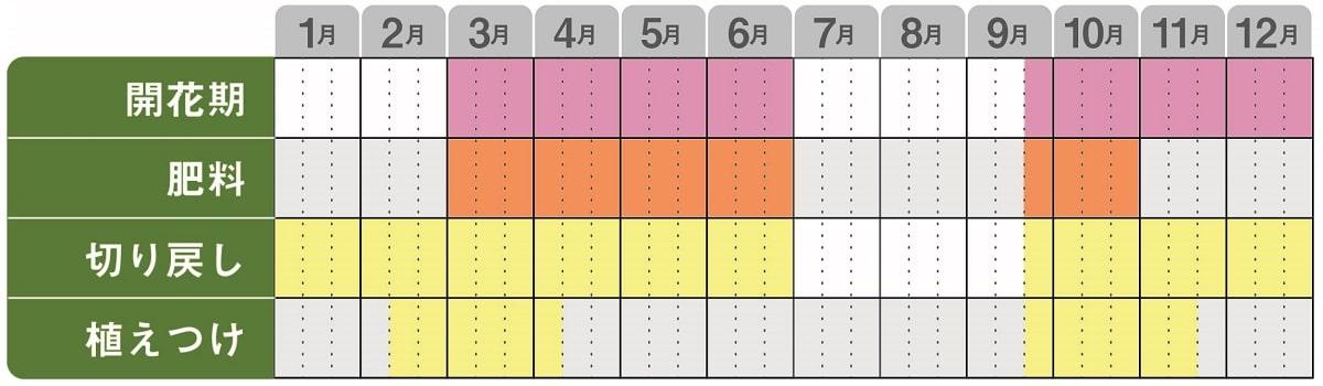ネメシアアロマンス栽培カレンダー