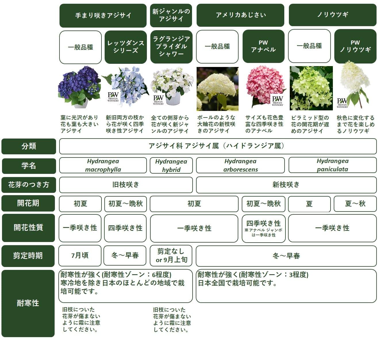 アジサイ(紫陽花)ハイドランジアの種類