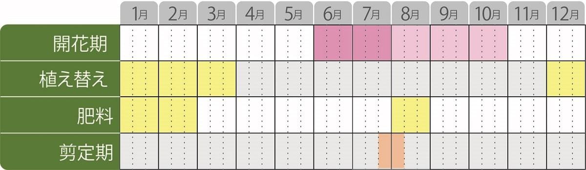 ヤマアジサイタイニータフスタッフ栽培カレンダー
