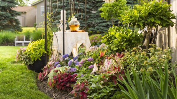 おしゃれなお庭を作ろう!ガーデンの種類と基本