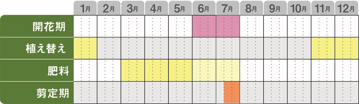 栽培カレンダー_アジサイ_パラプルー_地植え