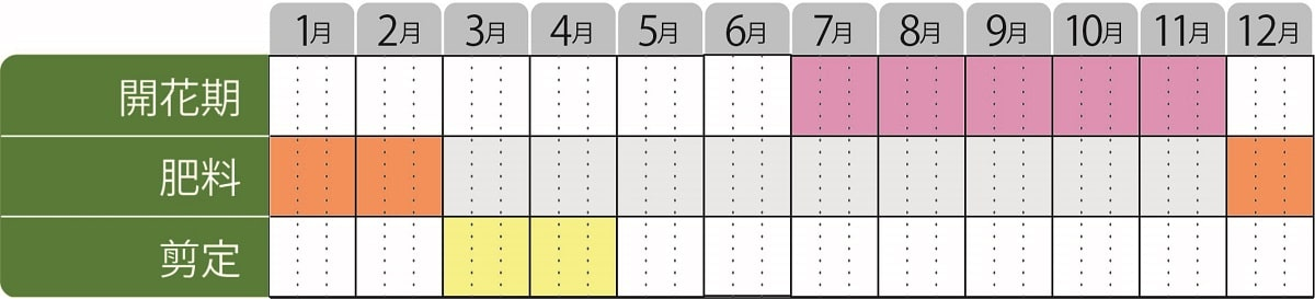 栽培カレンダー_アベリアルビーアニバーサリー