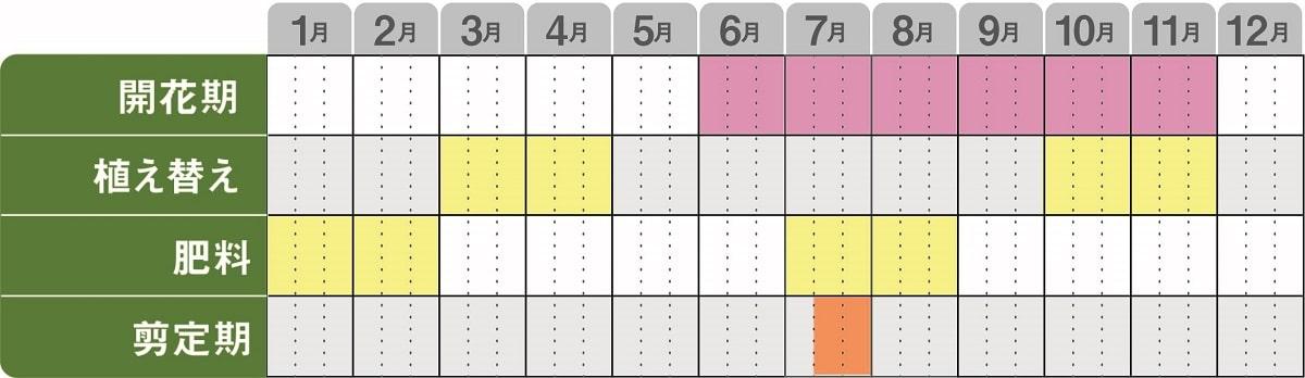 栽培kレンダー_アジサイレッツダンス